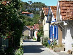 Cap-Ferret: L'Herbe: Lane en bloem oester hutjes dorp in de gemeente van Cap - Ferret - France-Voyage.com