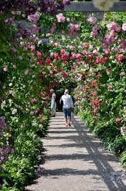 Bildresultat för rosenpergola