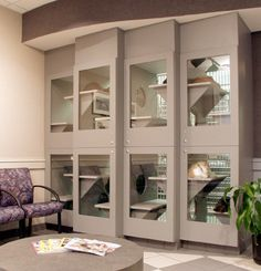 Animal Arts > Healthy Habitats - single cat condos with litterbox area separate from the living/sleeping areas Animal Room, Animal Decor, Baby Cats, Cats And Kittens, Cat Hotel, Shelter Design, Cat Cages, Cat Run, Cat Enclosure