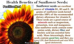 """Sunflower Seeds! Anti-oxidants, anti-aging, immune booster, lowers """"bad"""" LDL cholesterol, raises """"good"""" HDL cholesterol, great Vitamin E source --especially for pregnant or breast-feeding"""
