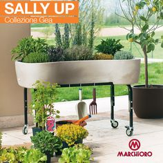 #SALLY UP Collezione Gea  Il nuovo orto domestico con riserva d'acqua  #ortoincasa #lineagarden #marchioro