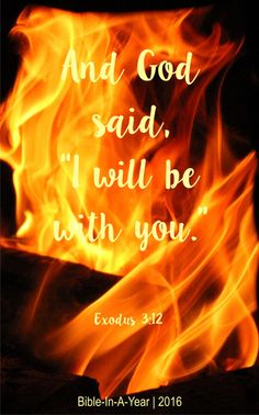 """And God said, """"I will be with you.""""Exodus 3:12 (NIV) Book Of Exodus, Exodus 3, Verses, Scriptures, Year 2016, Dear God, Gods Love, Prayers, Bible"""