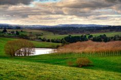 Adelaide Hills, absolutely one of the most beautiful sections of South Australia that SA Pool Services service.