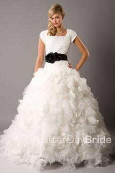 Latter day bride!!!!!!!!!! Chiffon Wedding Gowns, Modest Wedding Gowns, Affordable Wedding Dresses, Modest Dresses, Cute Dresses, Bridal Gowns, Prom Dresses, Awesome Dresses, Gown Wedding
