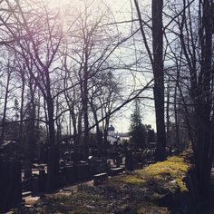 Hietaniemi cemetery #Helsinki #Finland