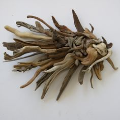 Driftwood+Wall+Art | Driftwood Wall Sculpture Angel fish wall sculpture