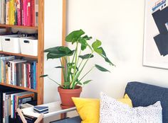 Kotilo - Divaaniblogit Cozy Reading Corners, Plant Painting, Cozy Living Rooms, Planters, Indoor, Outdoors, Interior, Inspiration, Home