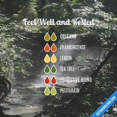 Feel Well and Rested - Essential Oil Diffuser Blend