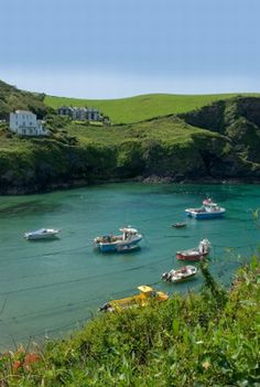 Port Isaac (pictured) to Padstow (day 7 on EH itinerary for North Cornwall Coast Path.
