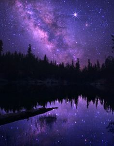 astronomy, outer space, space, universe, scenery, landscapes, stars, nebulas, trees, water