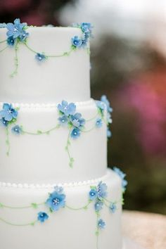 Cake decorated with dainty blue flowers| Cinderella Wedding Ideas|Photographer:  Creative M Photography Inc