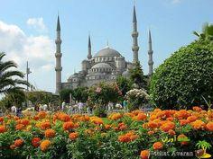 جاذبه های گردشگری ترکیه کشور ترکیه در قاره آسیا قرار دارد ولی قسمت کوچکی از آن در اروپا واقع می باشد. پایتخت آن آنکارا و بزرگترین شهر آن استانبول است و کشورهای ایران، یونان، عراق، گرجستان، ارمنستان، بلغارستان و سوریه همسایگان آن هستند. جاذبه های توریستی ترکیه به قدری زیادند که این روزها تور ترکیه را به یکی از انتخاب های نخست هر گردشگری تبدیل نموده اند. #گردشگری #سفر