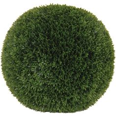 Podocarpus Ball (350 AUD) ❤ Liked On Polyvore Featuring Home, Outdoors,  Outdoor