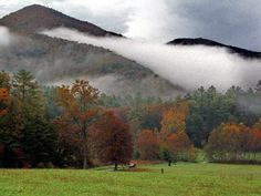 Cades Cove, Smoky Mountains, Tennessee. One of my favorite places on Earth.