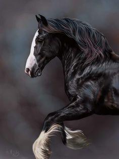 Horse Art - Gypsy Vanner - by SAI