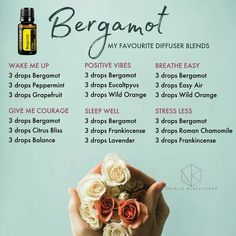 Bergamot -- bright, happy, rest, stress free, focus -- diffuser blends