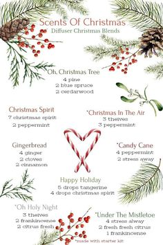 Young Living Essential Oils: Scents of Christmas Diffuser Blends Essential Oils Christmas, Essential Oil Diffuser Blends, Doterra Essential Oils, Young Living Essential Oils, Pine Essential Oil, Christmas Scents, Aromatherapy Oils, Aromatherapy Recipes, At Least