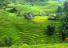 4 famous places in Sapa this summer