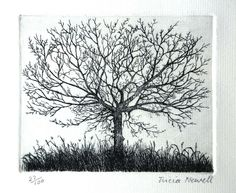 Tree (2012) Etching / Engraving by Tricia Newell | Artfinder
