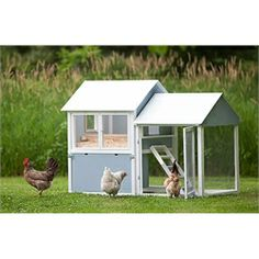 All-american Chicken Coop (up To 5 Chickens
