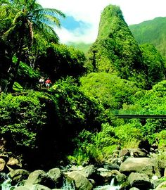 Maui, Iao Valley State Park - we did this little hike :) Gorgeous! Maui Travel, Hawaii Vacation, Vacation Trips, Vacation Spots, Travel Usa, Aloha Hawaii, Oh The Places You'll Go, Places To Travel, Places To Visit
