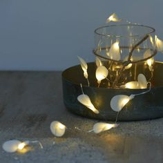 Are you interested in our Battery operated light garland? With our Delicate string lights you need look no further.