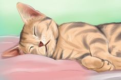 How to Know if Your Cat Is Sick. One of the joys of caring for cats is their laid-back nature. Cats excel at being relaxed and living the sort of lifestyle we can only dream of: playing, eating, and sleeping. Unfortunately, these habits. Chat Male, Cat Symptoms, Sick Cat, Cat Care Tips, Image Title, Cat Health, Illustrations, How To Know, Cats And Kittens