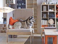 http://www.popsugar.com/home/Ikea-Release-Sprutt-Nornas-Collections-February-36498841