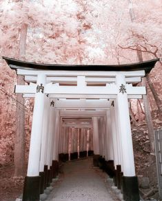 cities to visit in japan \ cities to visit in the us . cities to visit . cities to visit in europe . cities to visit bucket lists . cities to visit in italy . cities to visit in france . cities to visit in spain . cities to visit in japan Aesthetic Japan, Japanese Aesthetic, Travel Aesthetic, Aesthetic Girl, Cultural Architecture, Japan Architecture, Architecture Definition, Architecture Office, Ancient Architecture