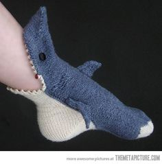 Shark Socks. Awesome.