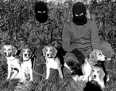 Masked members of the ALF, Animal Liberation Front--liberators of the tortured, the voiceless, the helpless.  Underground railroad workers.  Courageous warriors.  Heroes.