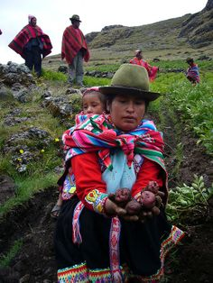 Woman harvesting potatoes in the Andes, Peru.  Travel throught Peru RESPONSibly with RESPONSible Travel Peru.  #RESPONSibleTravelPeru