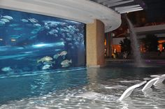 Image from http://worldalldetails.com/article_image/impressive_swimming_pool_140756.jpg.