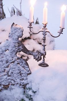 ❥ Winter | Sonja Bannick Pictures