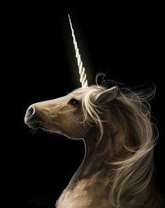 Unicornio by TigApple: Fantasy Unicorn, Unicorn And Fairies, Real Unicorn, The Last Unicorn, Unicorn Horse, Unicorns And Mermaids, Unicorn Art, Magical Unicorn, Fantasy Art