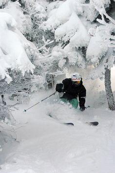 Trees and Powder Mad River Glen. #ski #snow #winter #vermont SkiMag.com