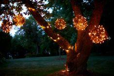 bolas de cipo com luzinhas de nata