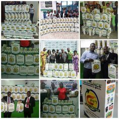 Natural Foods, Global Business, Amai, How To Stay Healthy, Learning, Studying, Teaching, Education