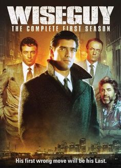 Wiseguy... what a terrific series. Especially when Ray Sharkey was on it.