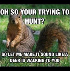 I HATE SQUIRRELS!!!!!! They freak me out every time. I think that a monster 20 point is crashing through the woods then find out it is a tiny squirrel... GRR!!