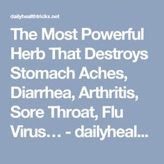 The Most Powerful Herb That Destroys Stomach Aches, Diarrhea, Arthritis, Sore Throat, Flu Virus… - dailyhealthtricks
