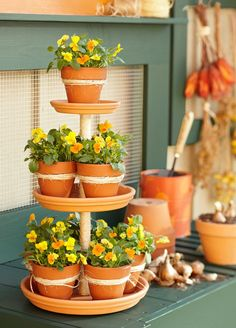 Making a tiered stand with terracotta saucers, good for herbs in the kitchen