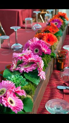 Combine Gerber Daiseys with moss and succulents for a stunning array of colors on your wedding tablescape!!