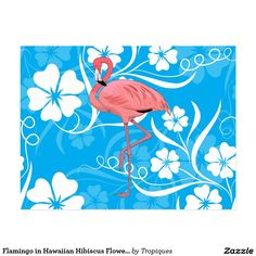 Flamingo postcard in Hawaiian Hibiscus Flowers Turquoise Postcard