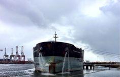 ballast water, ships, viruses