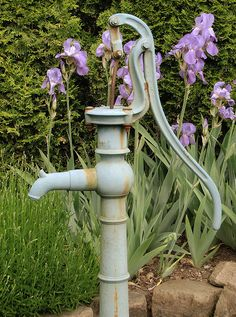 I pumped many buckets of water from an old pump like this at my grandparent's farm. Grandma also had irises growing around the pump! Old Water Pumps, Grey Pumps, Pump It Up, Water Well, Farms Living, Down On The Farm, Old Farm, Wishing Well, Water Garden