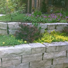 A beautiful retaining wall in a neighbors house. The way I want my garden to be.