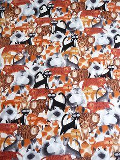 Ein wirklich süßer Baumwollstoff mit den unterschiedlichsten Katzen.  Der Baumwollstoff wurde von einem amerikanischem Desigener entworfen.  Der Baumwollstoff ist von hervorragender Qualität und liegt 1,15 m breit es sind 5 m vorhanden.  Der Preis versteht sich für 0,50 Meter.  Aus dem Baumwollstoff lassen sich Kindertücher, Tagesdecken, Bettwäsche, Kinderkleider, Jungenhemden, Gardinen und vieles mehr herstellen.