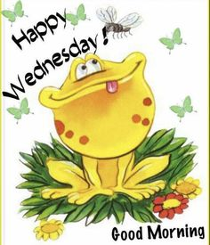 Happy Wednesday Pictures, Happy Wednesday Quotes, Good Morning Wednesday, Good Morning Happy, Good Morning Picture, Happy Quotes, Wednesday Greetings, Wednesday Memes, Funny Frogs