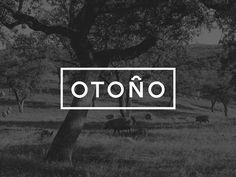 Otoño — The Dieline - Branding & Packaging